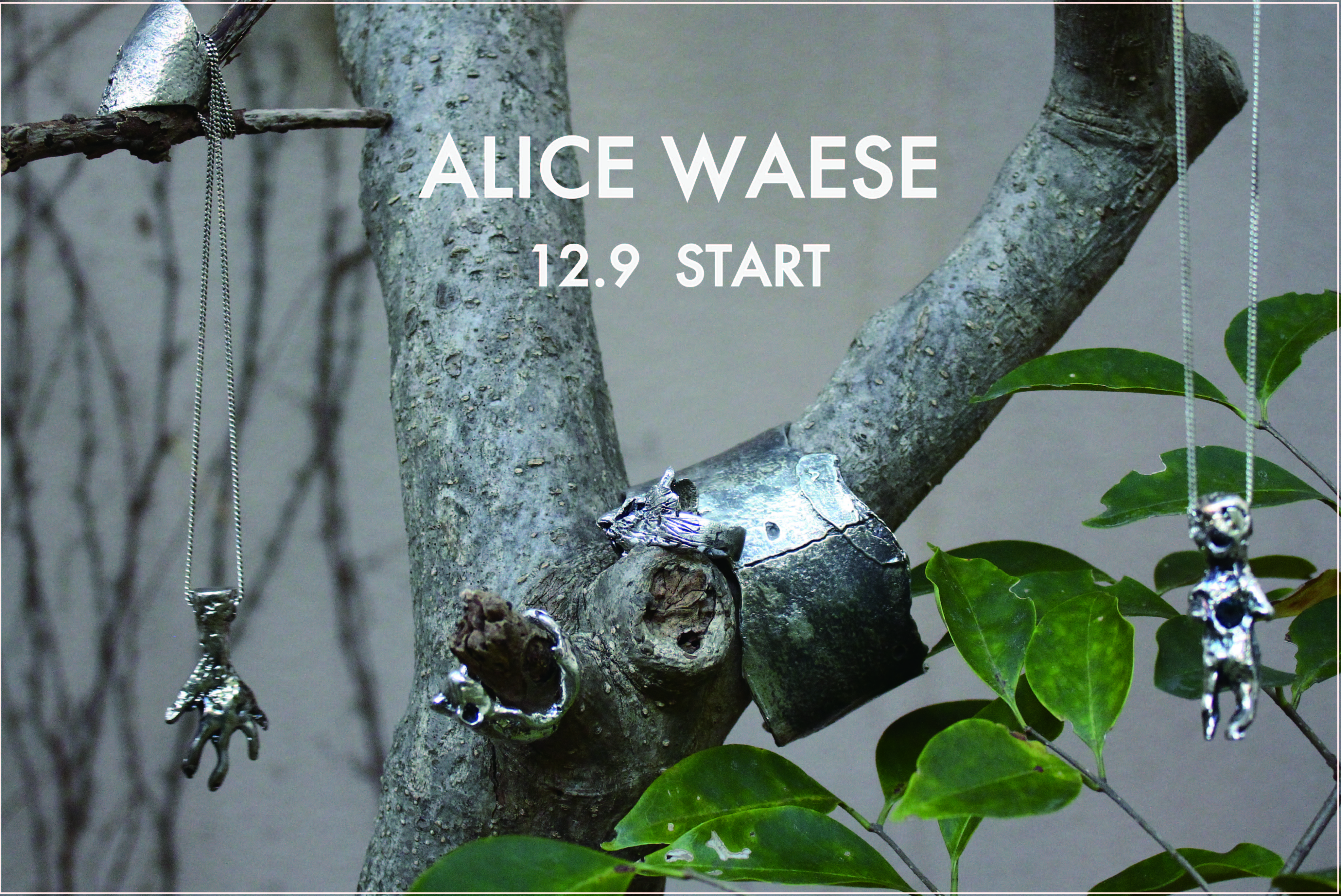 "NEW BRAND ""ALICE WAESE"" 12.9 store release!!"