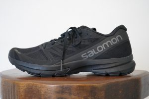 SALMON ADVANCED SLAB SONIC 2 LTD