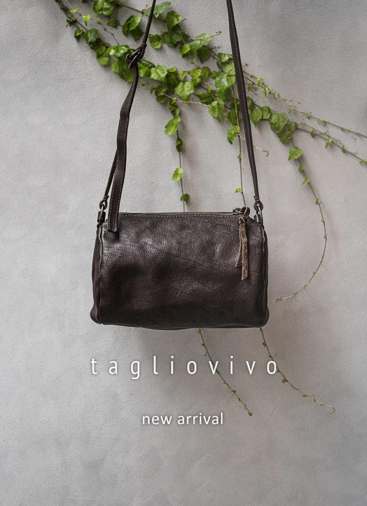 タリオヴィヴォ 新作入荷10型発売開始